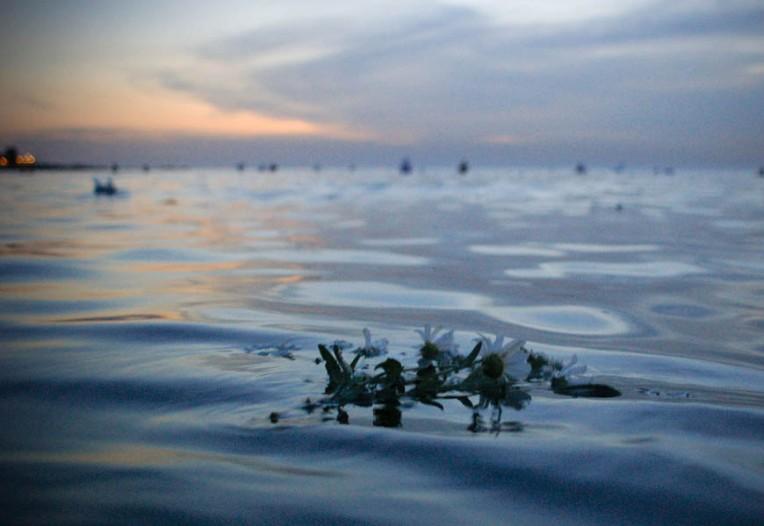 flowers at sea